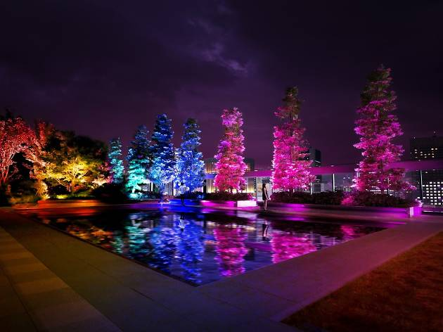 Resonating Trees in Ginza Six Garden