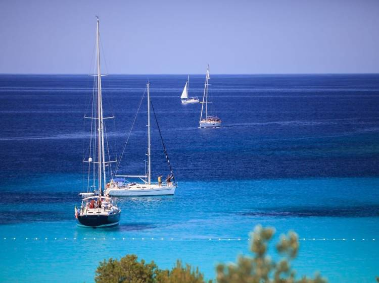Survey the seas via sailboat
