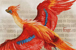"Family Programs for ""Harry Potter: A History of Magic"""
