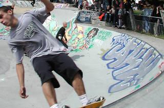 Meanwhile Gardens Skate Bowl