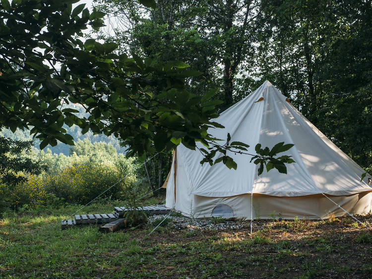 Quinta do Figo Verde: amor, tendas  e uma caravana
