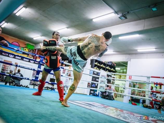 SRG Muay Thai (Photograph: Supplied)