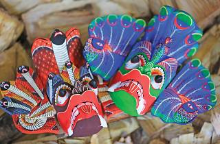 Vibrant and exotic masks
