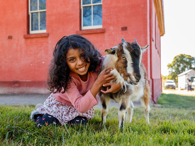 Girl sits with small goat.