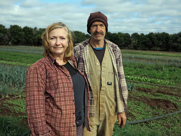 Tim and DeriAnne Wyatt of Angelica Farm