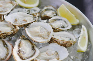 Oysters, the Spillover