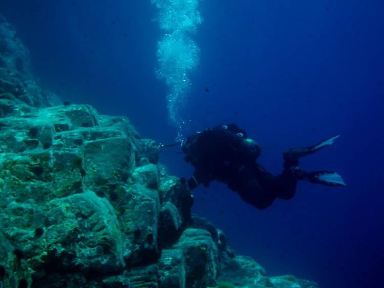 Go night diving