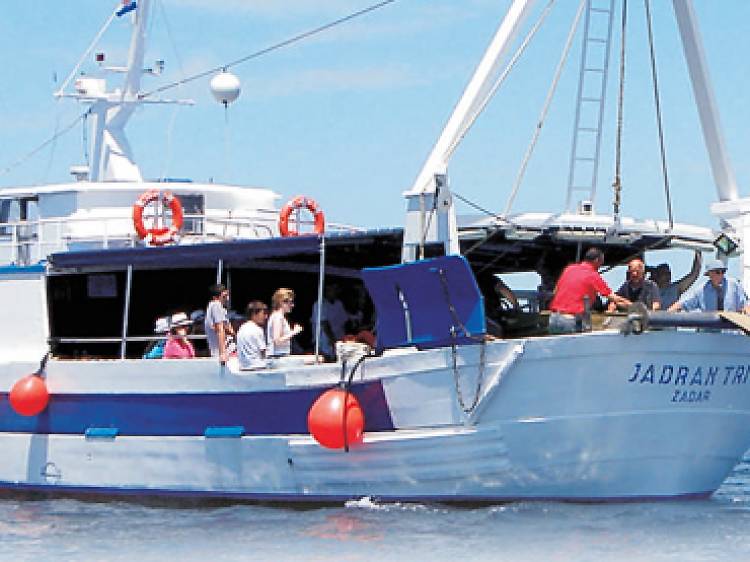 Embark on a maritime adventure