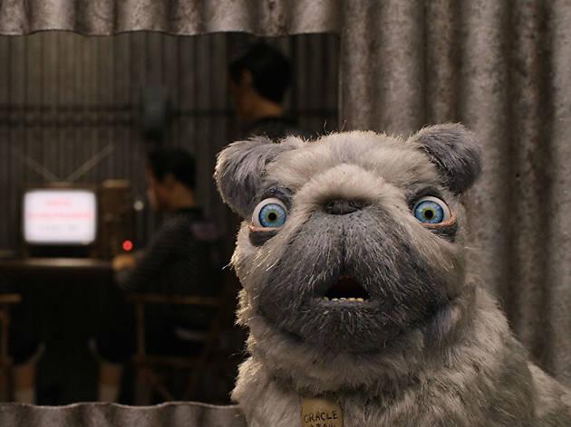 Isla de perros, la nueva película de Wes Anderson