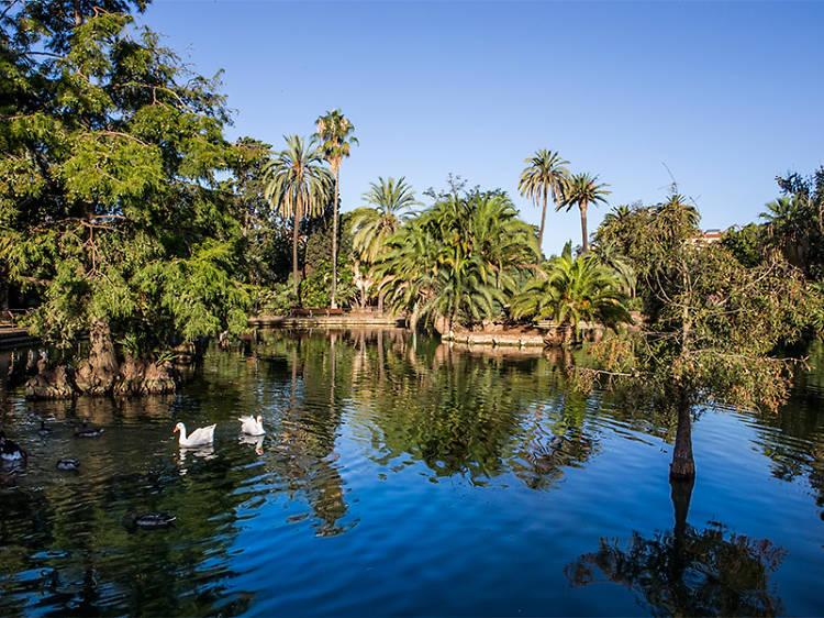 Hacer un pícnic en el Parque de la Ciutadella