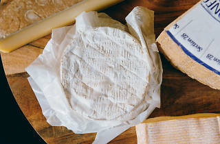 A wheel of white mould cheese