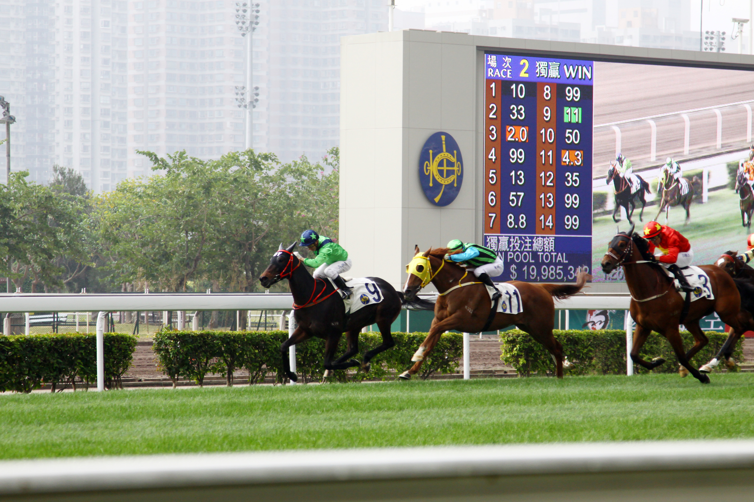 Hong Kong Champions Mile, horse racing