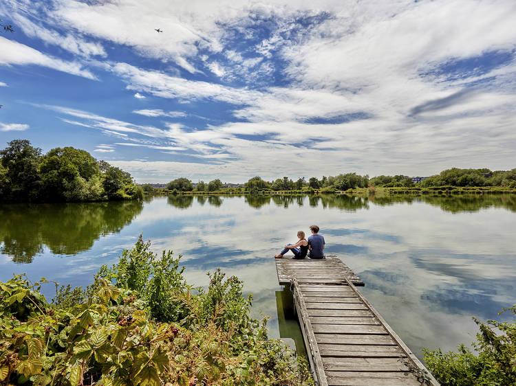 Spot wildlife at Walthamstow Wetlands