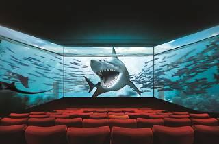 Cineworld ScreenX campaign. Do not reuse.