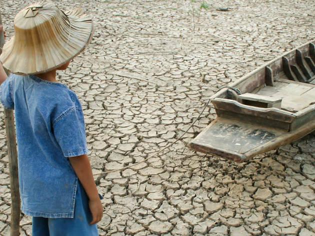 S.m.a.r.t. Caminos hacia la sostenibilidad