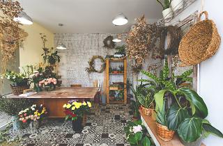 Botânica Florista