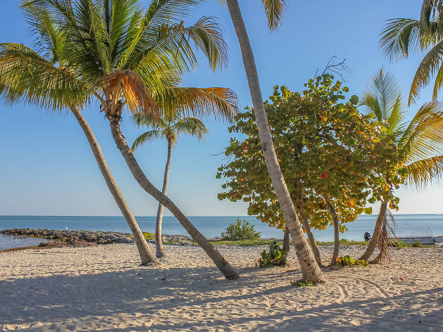 Seven ways to experience Key West like a local