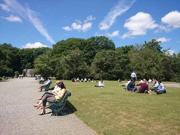 Iveagh Gardens, Dublin