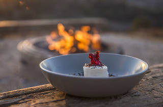 Plate of native ingredients near a fire.