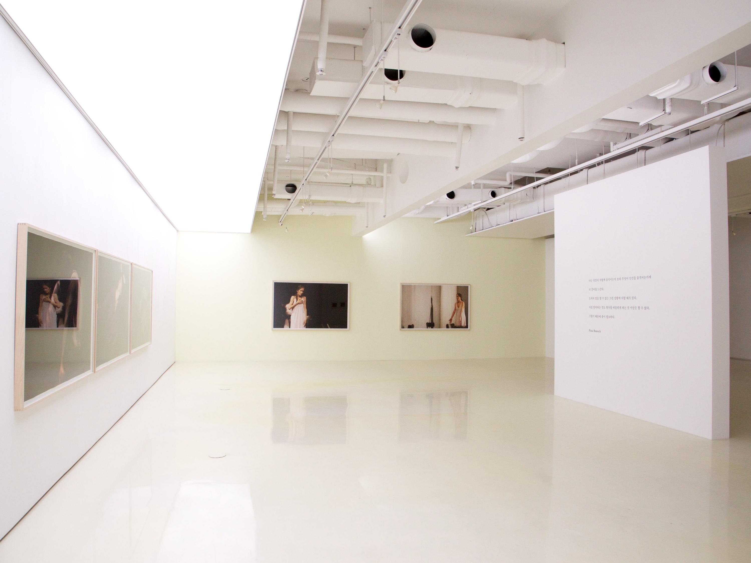 The Page Gallery