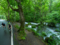 Five best cycling routes in Tokyo and Aomori