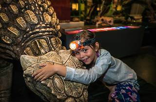 Kid hugs model dinosaur.