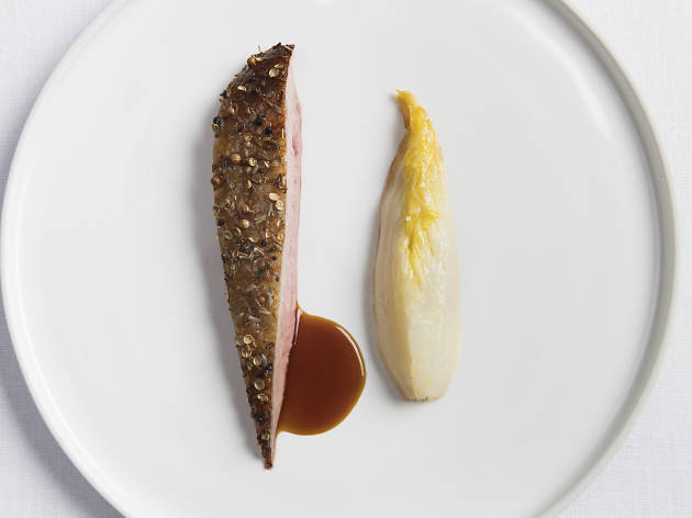 Duck at Eleven Madison Park