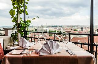 Check out our list of the best restaurants in Prague to try on your next trip/