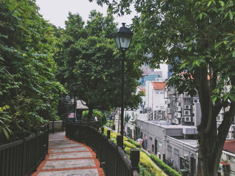 Ann Siang Hill Park