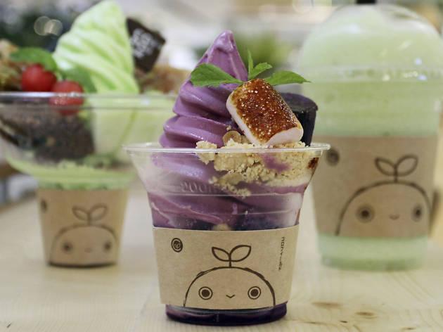 Coro Field Dessert