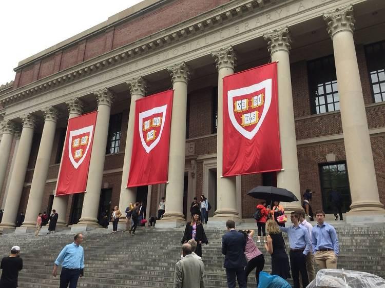 Harvard Campus Walking Tour