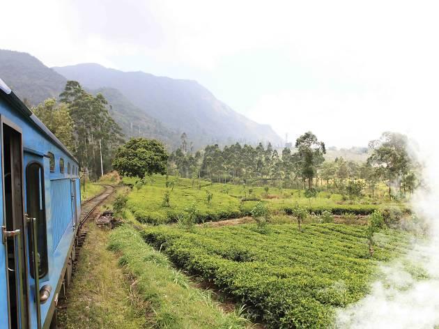Colombo to Dambulla
