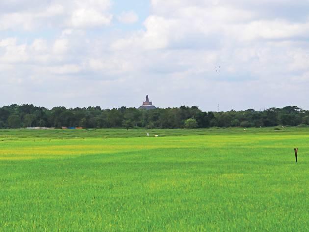 Abhayagiriya at a distant