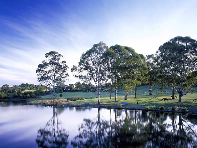 Australian Botanic Gardens