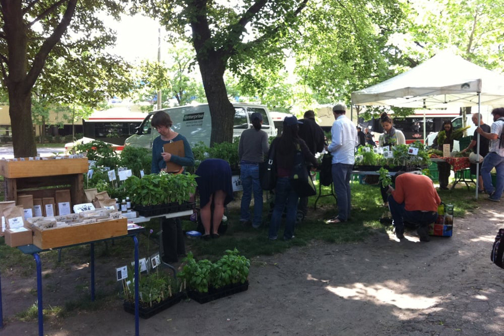 Dufferin Grove Farmers' Market