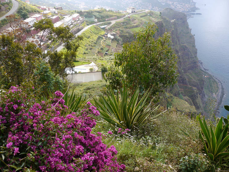 Ride the cable car down to the Fajã dos Padres in Madeira