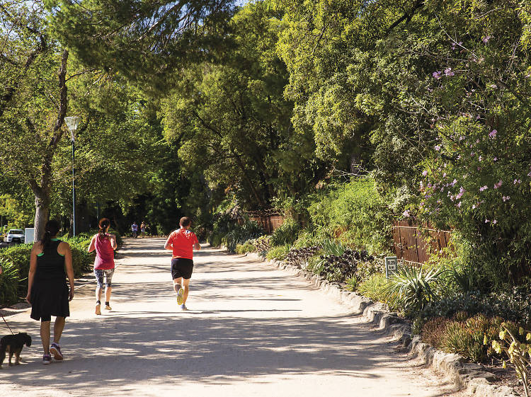 Go for a run around the Tan