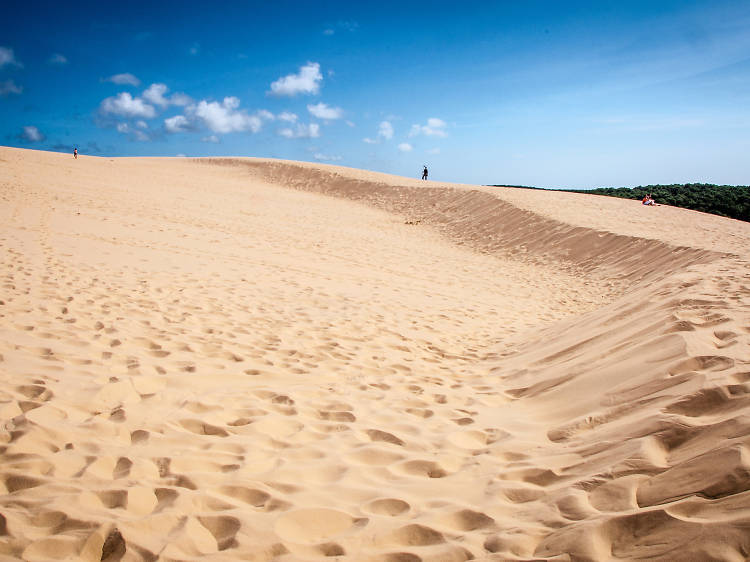 Go to the Bassin d'Arcachon and make sand castles on the Dune du Pilat