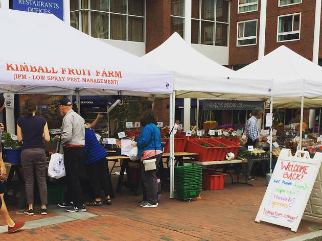 Charles River Farmers Market