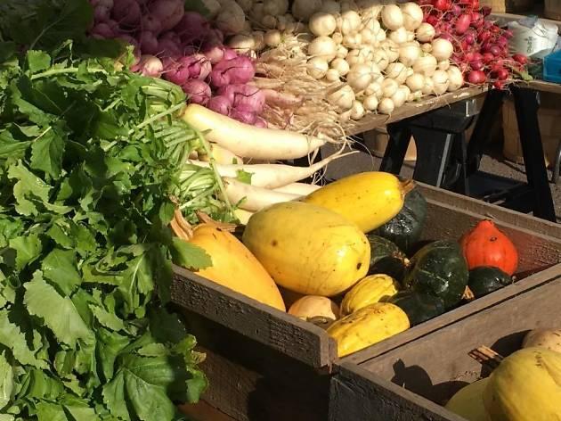 Davis Square Farmers Market