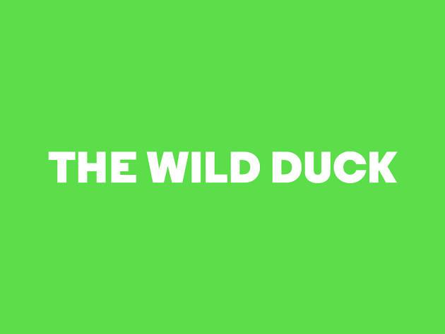 The Wild Duck, Almeida