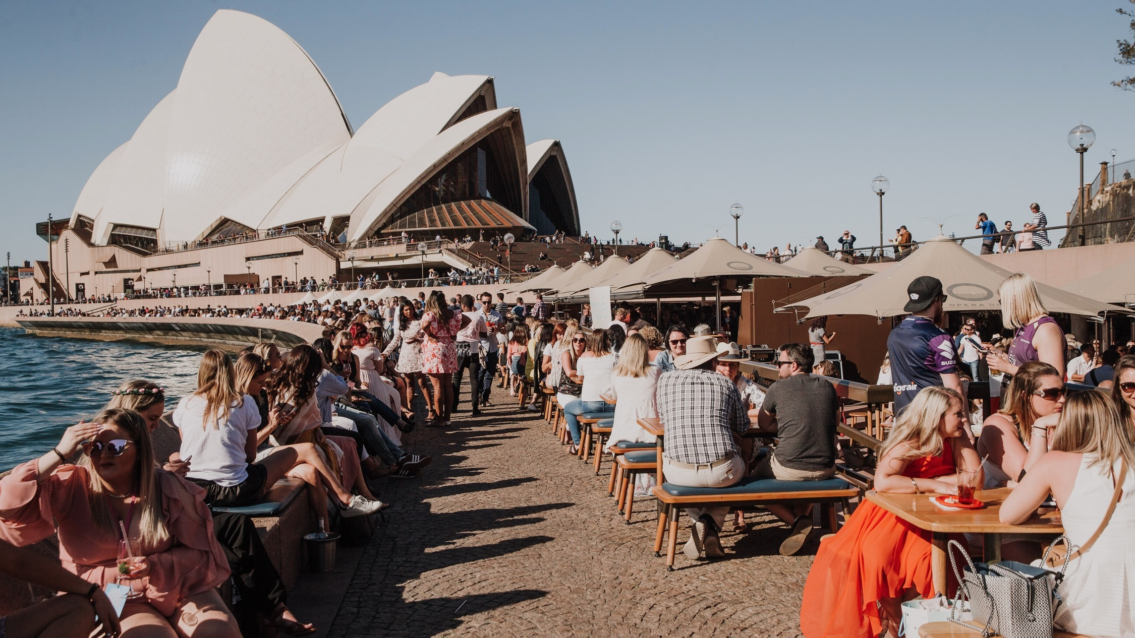 People sitting in sun at Opera Bar Rose Festival