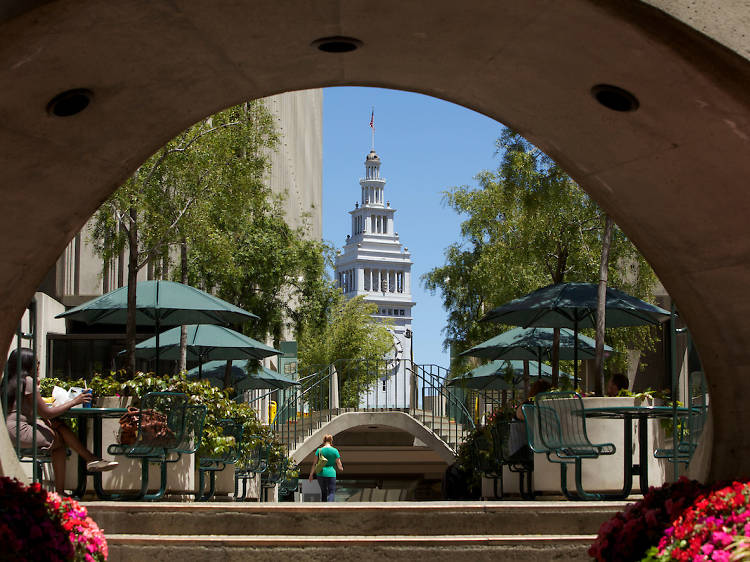 Forage for fresh produce at the Ferry Building