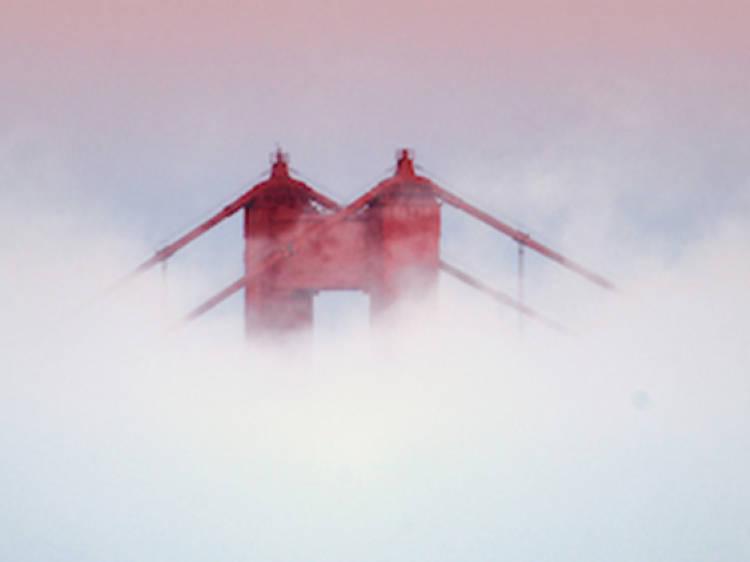 Frolic in the fog