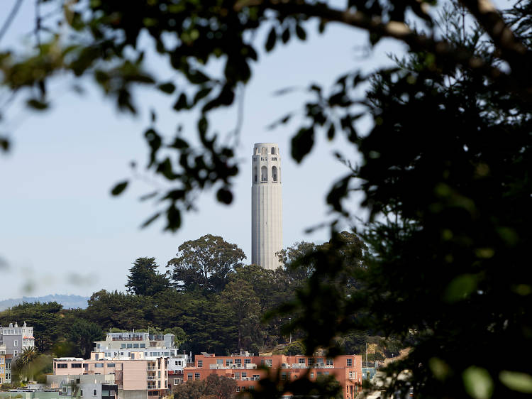 Admire the view from Coit Tower