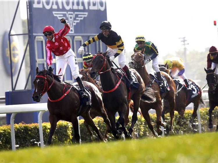 Longines International Jockeys' Championship