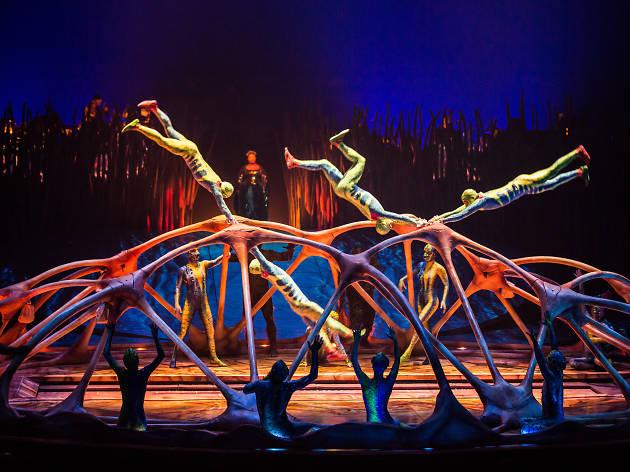 Catch Cirque du Soleil's new show 'Totem' in Zurich!