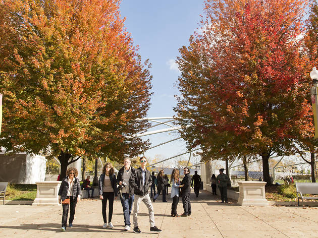 Where to see the best fall foliage in Chicago