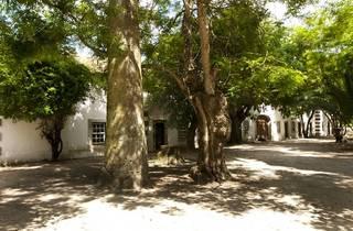 Quinta da Alorna