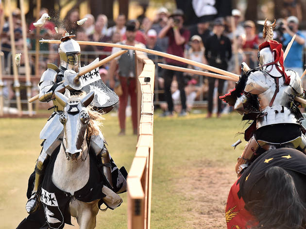 St Ives Medieval Faire (Photograph: Supplied)